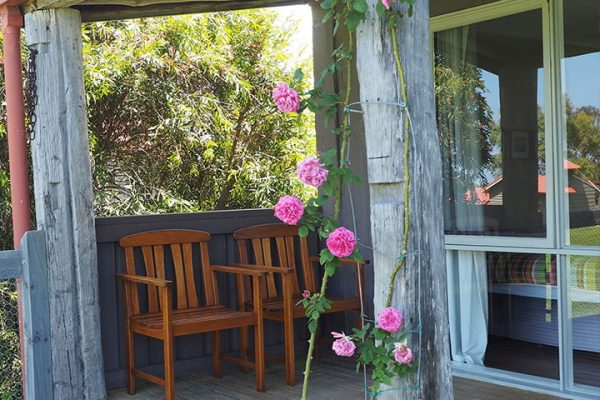 rose-cottage-at-oakleigh-farm