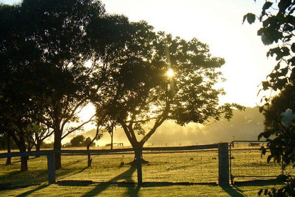 sunset-at-oakleigh-farm